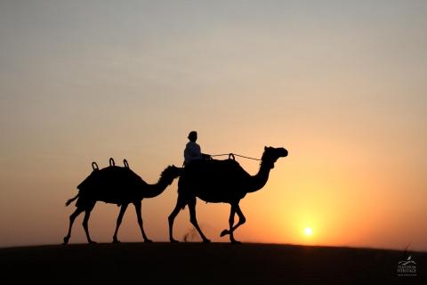Dubai: woestijnsafari met kamelenrit