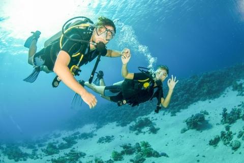 Van Dubai: halve dag snorkelen en scuba diven in Fujairah