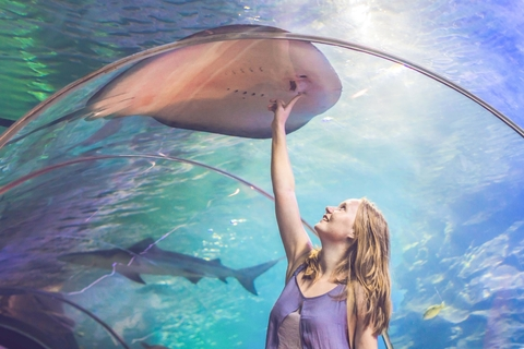 Dubai: Aquarium & Burj Khalifa combiticket met Level 124