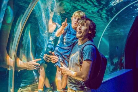 Bezoek aan Dubai Aquarium, Underwater Zoo & Penguin Cove