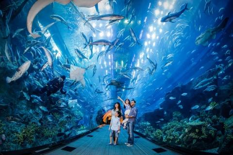 Dubai Aquarium & Underwater Zoo: dagkaart