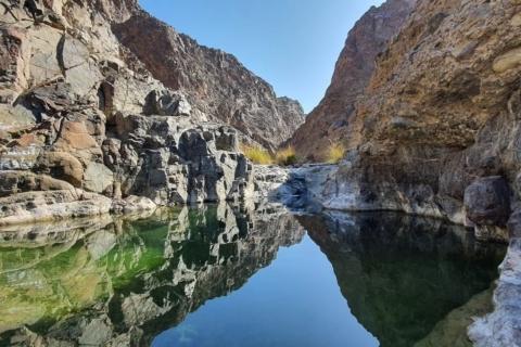 Desert Drive & Wadi Shawka Pool Bezoek