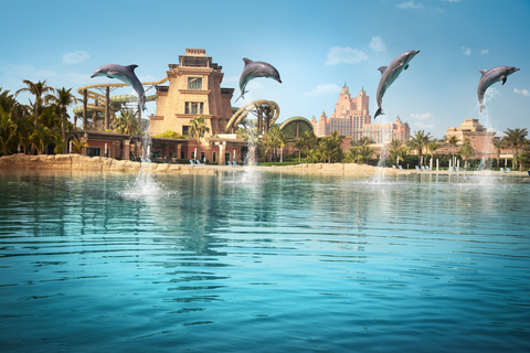 Dubai: ontmoet dolfijnen in ondiep water bij Atlantis