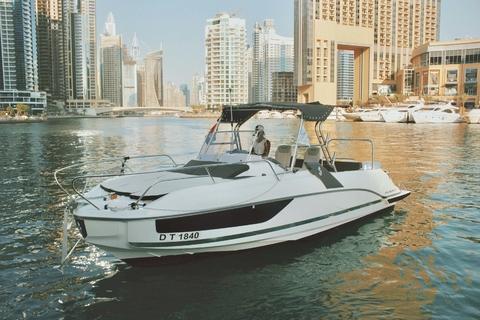 Dubai: 2 - of 3-uur durende rondvaart om te zwemmen, zwemmen en sightseeën