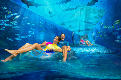 Dubai: ticket Atlantis Aquaventure & Lost Chambers Aquarium