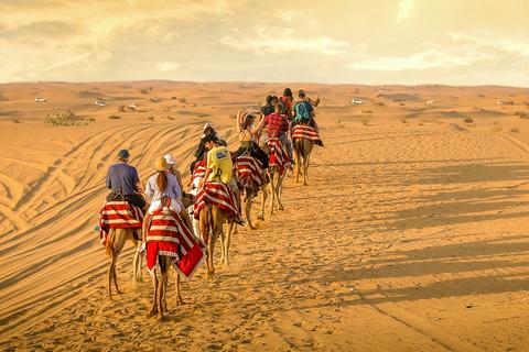 Vanuit Dubai: zonsondergang kemelentocht & BBQ en shows