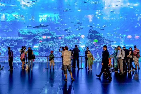 Dubai Aquarium en Underwater Zoo: Explorer