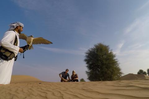 Namiddag Dubai Falconry Safari