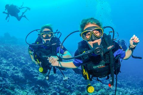 Ontdek snorkelen in Dubai