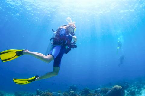 Van Dubai: Fujairah Scuba Dive & Snorkeling met live BBQ