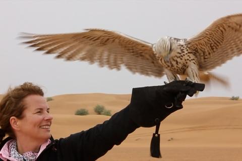 Dubai Falconry Safari