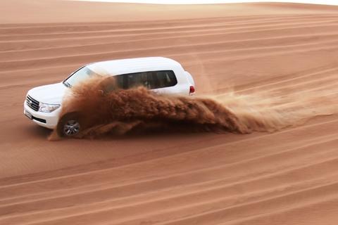 Vanuit Dubai: Arabische safari-ervaring