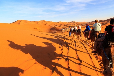 Dubai kamelentocht met zonsopgang en ontbijt