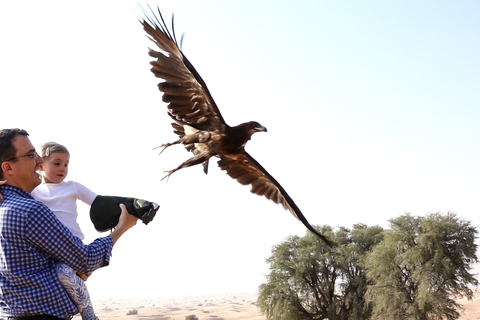 Dubai: Private Falconry Safari