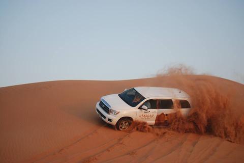 Dubai Red Dune woestijnsafari: BBQ, kamelenrit & zandboarden