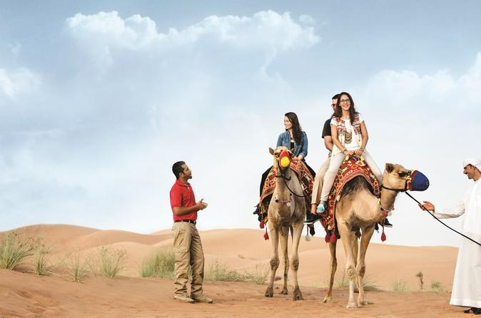 Camel Trekking in the  Dubai Desert Conservation Reserve