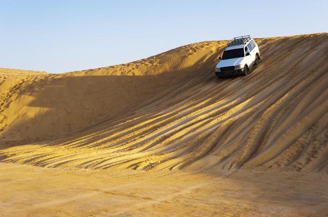 Privétour door de Arabische woestijn in een 4x4-voertuig - dagtrip vanuit Dubai