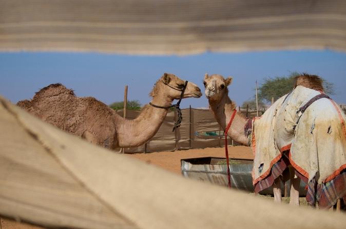 Sightseeingtour naar de stad Al Ain - de Tuinstad