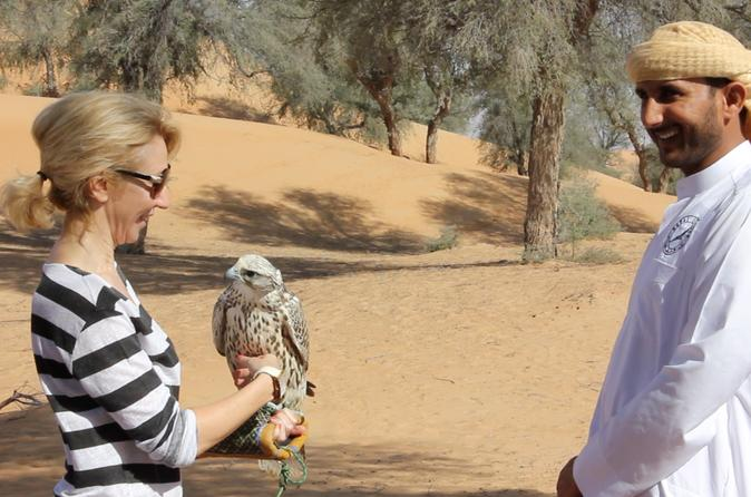 Small-Group Interactive Falconry Experience and Wildlife Drive