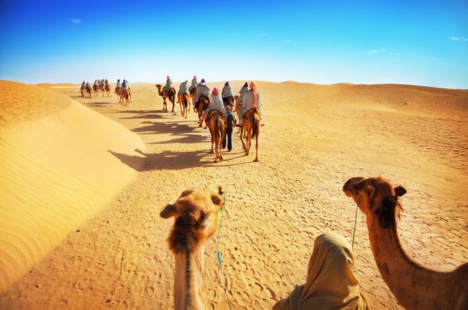 Woestijnavontuur: kameelsafari met diner + Emirati-activiteiten